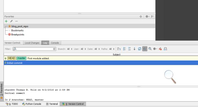version_control_window